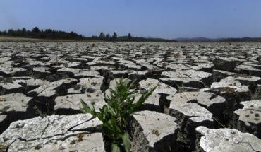 Cambio Climático: el gran enemigo que pone en riesgo el 80% de las exportaciones chilenas