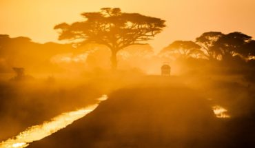 Car passing by in between trees ( Amboseli national park, Kenya). Photo by Sergey Pesterev on Unsplash