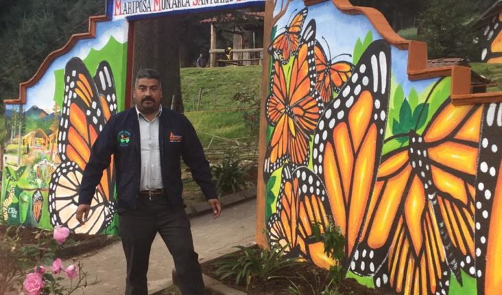 Death of two defenders puts Monarch Butterfly Reserve on alert