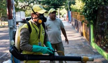 Four cases of indigenous dengue confirm edinting in Paraná