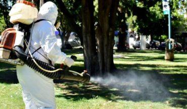 En medio del coronavirus el dengue se cobró dos nuevas vidas