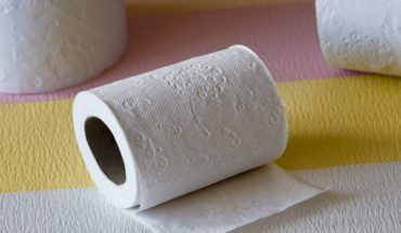 How much toilet paper do you need to survive the pandemic? Find out here