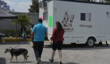 Morelia Town Hall offers with canine and feline sterilization campaign