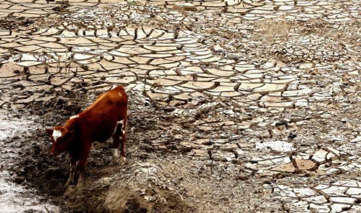 Strategy of the Valparaiso Region to tackle drought