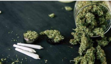 Advierten de riesgos por consumo de marihuana ante contagio con el Covid-19
