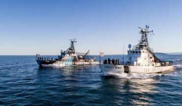 COVID-19 obliga a científicos a suspender vigilancia de la vaquita marina