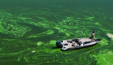 Día Mundial de la Tierra: ¿a qué desafíos ambientales nos enfrentamos?