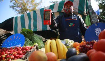 Feriantes de la comuna de Santiago podrán vender sus productos de forma online