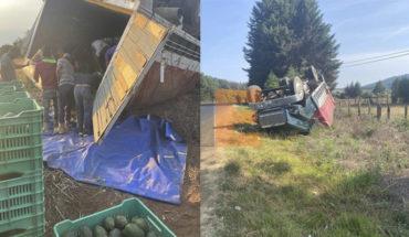 Intento de robo de camión aguacatero termina en accidente en Tacámbaro, Michoacán