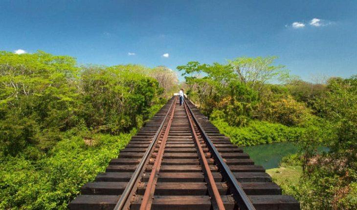Organizaciones piden frenar obras del Tren Maya por riesgo ante COVID-19