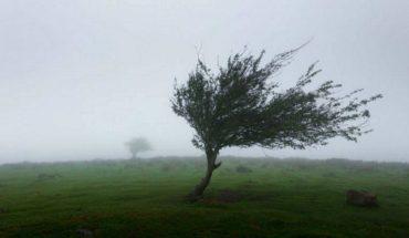 Prevén chubascos, caída de granizo y rachas de viento en Oaxaca y Chiapas (Video)