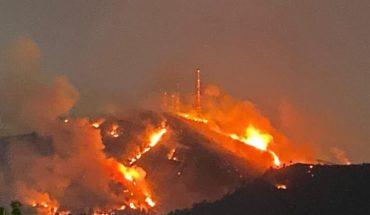 Van 5 mil hectáreas de bosque incendiadas este año en Michoacán