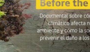 #MMAencasa, the environmental campaign to raise awareness during quarantine