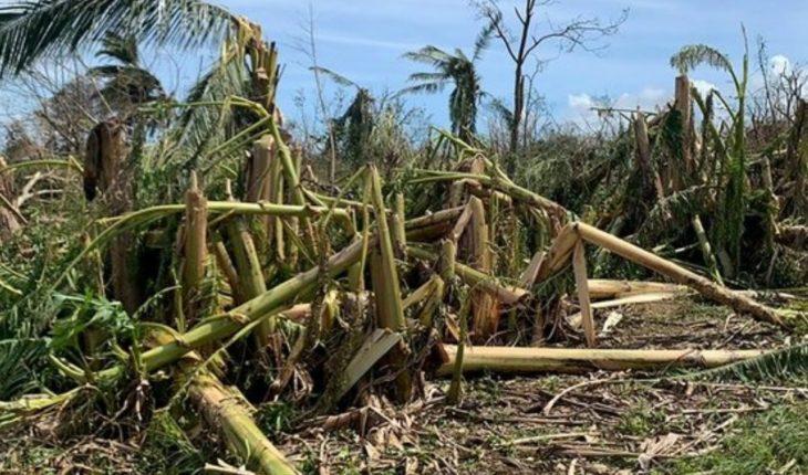 UN releases 2.5 mdd to help Vanuatu after cyclone