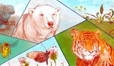 Día Mundial de la Biodiversidad, el tejido vivo de nuestro planeta
