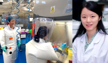 Wuhan Institute of Virology claims to have strains of coronavirus but do not match covid-19