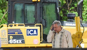 Por obra del Tren Maya, Fonatur planea derribar miles de árboles