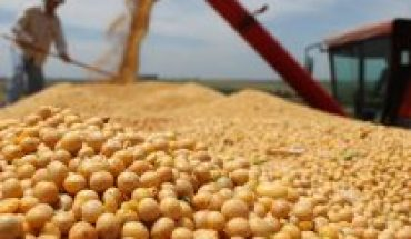 Legume shortage: a problem of food security and sovereignty