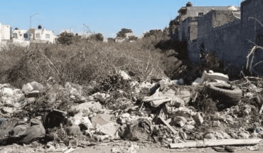 Denuncian deficiente recolección de basura en zonas de Culiacán, Sinaloa