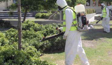 """Denuncian que el gobierno porteño """"dejó de monitorear"""" el mosquito del dengue"""