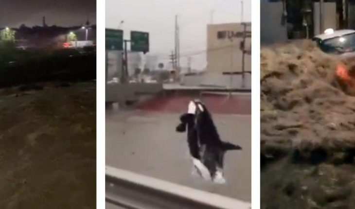 Huracán Hanna golpea fuerte en Nuevo León; Videos y fotos más impresionantes