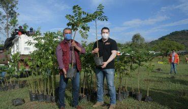 Raúl Morón da comienzo a primer reforestación urbana 2020, en colonia Francisco Zarco