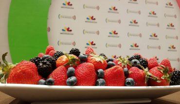 Realizarán Congreso Internacional de Berries de forma online por pandemia