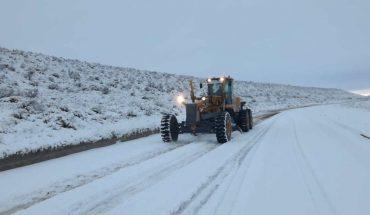 Río Negro: declaran Estado de Emergencia y Desastre agropecuario por las nevadas
