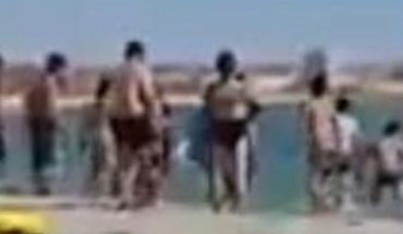 Turistas golpean con palos a una foca para que niños se tomen fotos