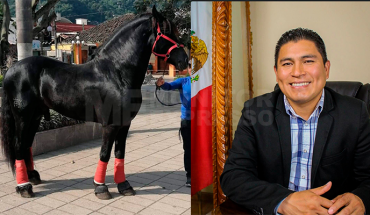 Mayor organizes Horse Raffle to get resources for public works