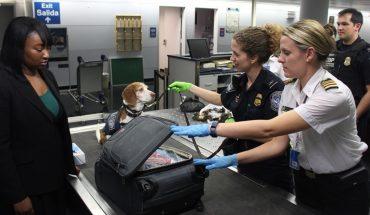 UBA trains dogs to detect coronavirus with smell