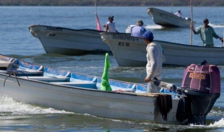 De pesca del camarón | EL DEBATE