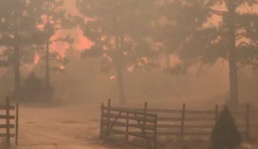 Incendio forestal en Sierra de Juárez ha consumido 2 mil 500 hectáreas