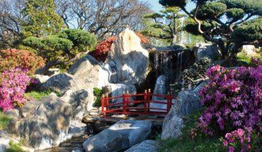 Jardín Japónes se reinventa por la cuarentena con opciones y descuentos