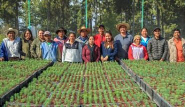 Jornaleros de los bosques, los otros damnificados por la crisis de COVID