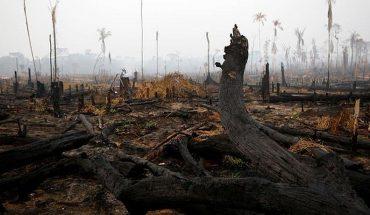 Preocupante alza de incendios en el Amazonas: Brasil registró más de 6 mil focos durante julio