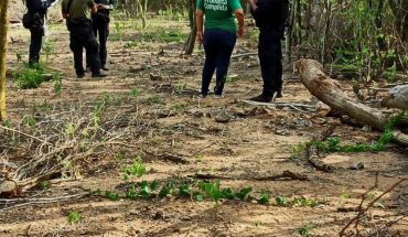 Rastreadoras localizan osamenta en El Fuerte, Sinaloa