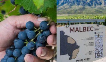 """Un vino argentino de $1200 elegido como """"el mejor del mundo"""""""