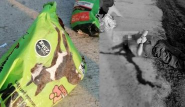A dismembered corpse and a one shot are found in Valle Verde de Zitácuaro