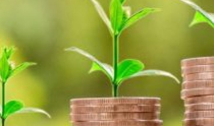 """Proposals for """"green and blue"""" economic revival are presented"""