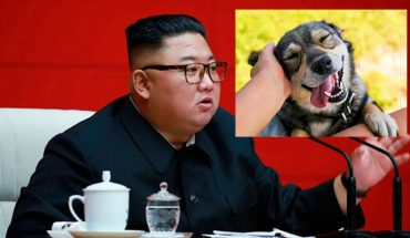 They forbid having dogs as pets in North Korea