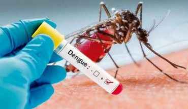 Usa. U.S. to release genetically modified mosquitoes to fight dengue