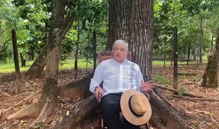 """AMLO califica de """"triunfo"""" el que el INE negara el registro a México Libre (Video)"""