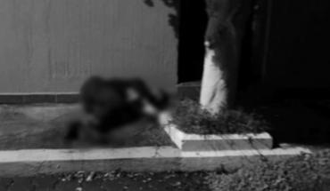"""Encuentran el cuerpo """"encintado"""" de un hombre en el Fraccionamiento Río Nuevo de Zamora"""