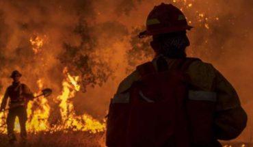 Imparables incendios ahora arrasan la costa este de Estados Unidos