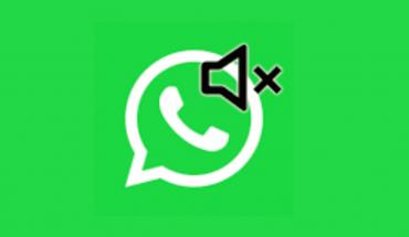 WhatsApp: Cómo saber si un contacto te silenció
