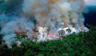 Huge fire burns in Pantanal area in Brazil