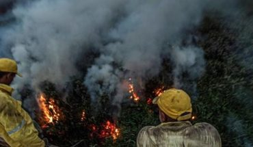 Pantanal fires reach record level in Brazil