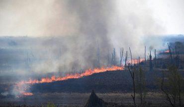 Asignación mensual de $10.000 para los trabajadores que combaten los incendios
