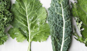 Conoce los beneficios del kale o col rizada en la salud
